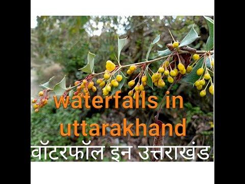 वॉटरफॉल इन उत्तराखंड, waterfall in uttarakhand,2020
