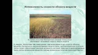 видео Динамика экосистем
