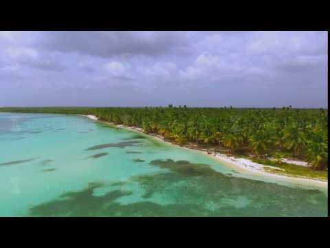 View from quadrocopters to the island with large palm trees and bathing people