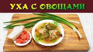 Вкусная уха без картошки Новый рецепт для любителей ухи Такую уху можно приготовить из любой рыбы