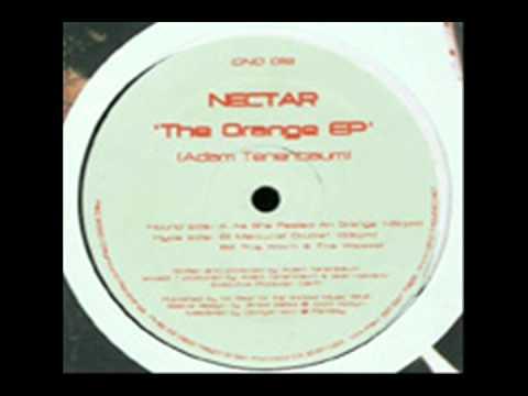 Nectar - As She Peeled An Orange