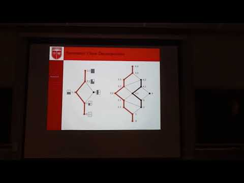 Unimodal Polynomials and Lattice Walk Enumeration with Experimental Mathematics part1