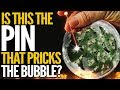 Which Sector Is The Pin That Pricks The Everything Bubble? Mike Maloney
