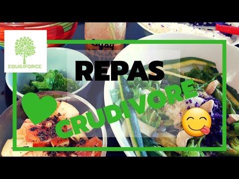 😋cuisine-crudivore-:-jus-de-légumes,-salade-composée,-salade-de-fruits-|-lundi-vert-n°8