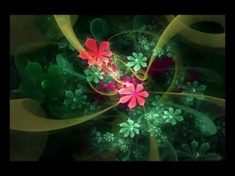 Hidupmu Hidupku - Zigas ( Karaoke ).flv