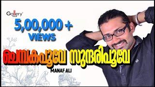 Chembaka poove sundaripoove- album Ungal Minsaram by Gallery Vision