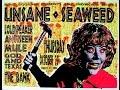 Mule Live 4 13 95 Yellow Springs OH PW Long Kevin Monroe Jason Kourkounis mp3