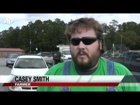 Few Americans Take Immigrants' Jobs in Alabama