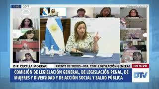 Dip. Moreau, Cecilia - Reunión Informativa por la ley IVE - 04-12-2020