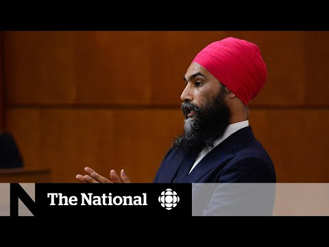 Singh doubles down on fight against systemic racism, won't apologize to Bloc MP
