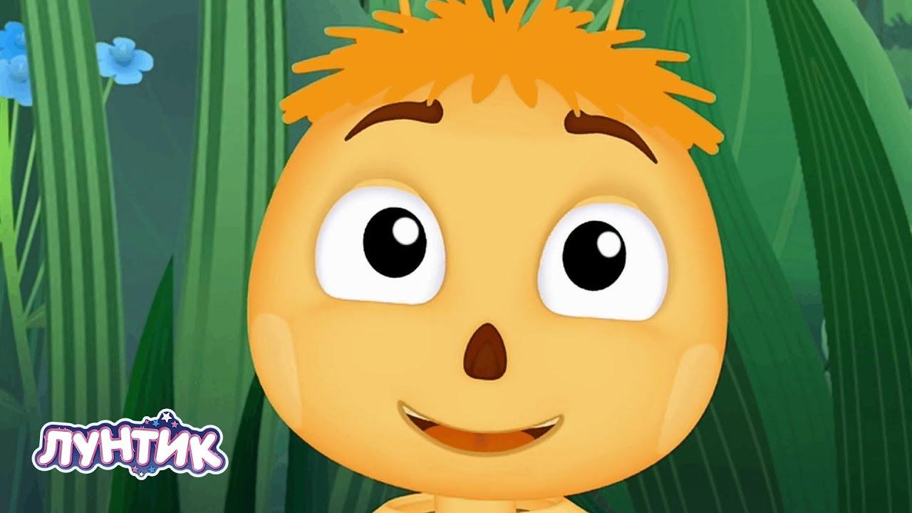 Лунтик | Пчелы ??? Сборник мультиков для детей