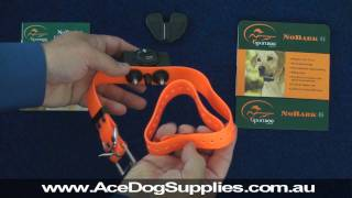 Bark Collar Review - Sport Dog Sbc-6