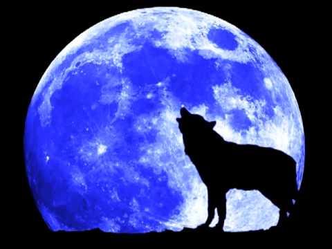 Blue Moon (Rodgers & Hart cover) - Conor Hogan
