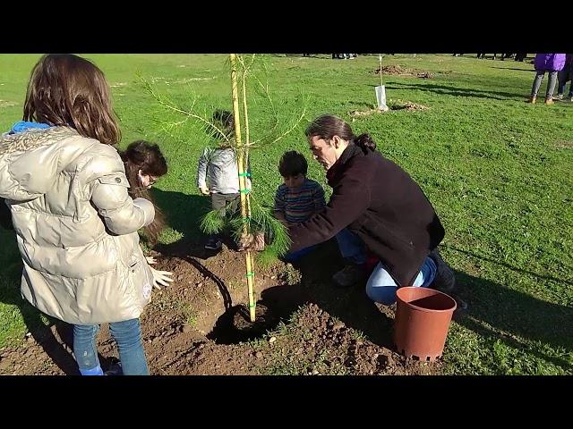 El Comú de Lleida se suma a la plantada d'arbres al Bosquet de la Bordeta