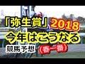 【競馬予想】  第55回 報知杯弥生賞2018「GⅡ」