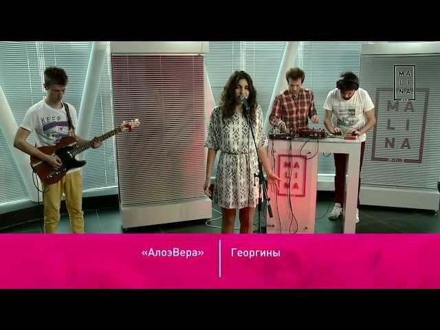 АлоэВера - Георгины (live Malina.am)