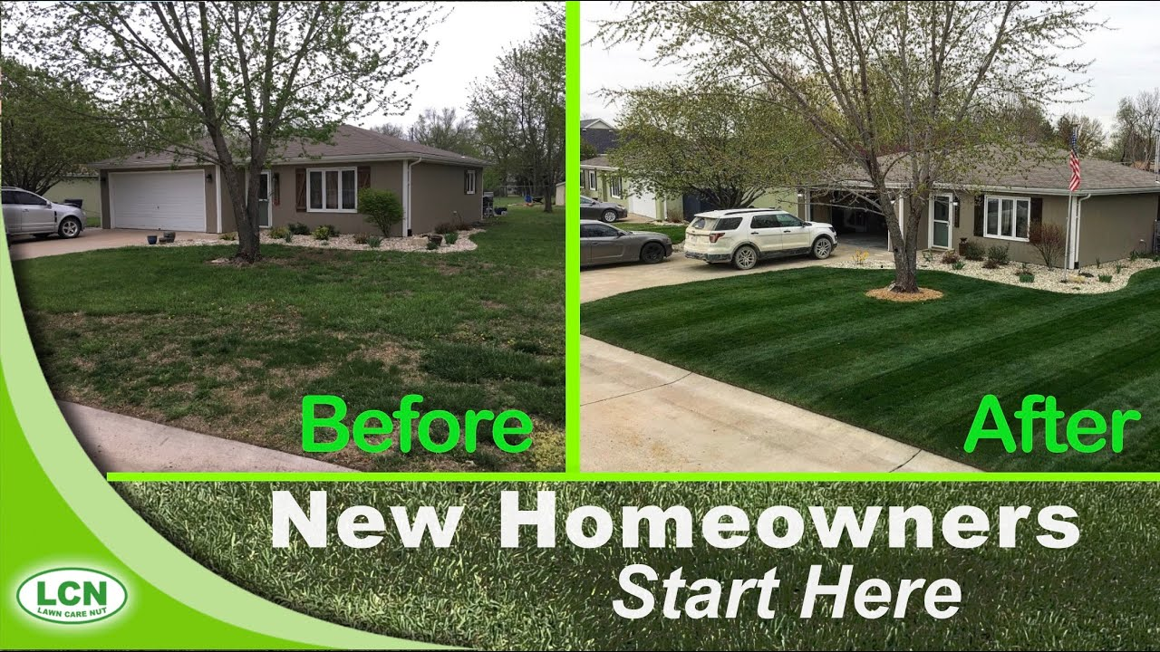 Your Ugly Lawn With This Single Lawn Application