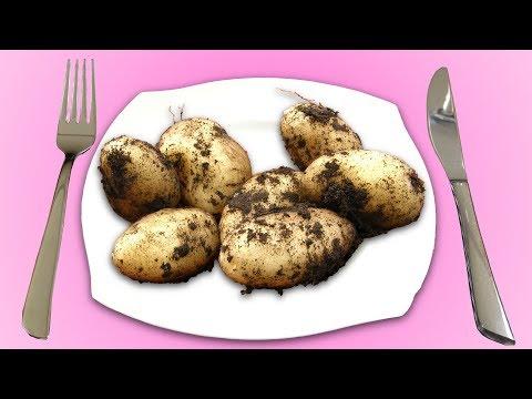 The 5 Tastiest Ways To Cook Potatoes