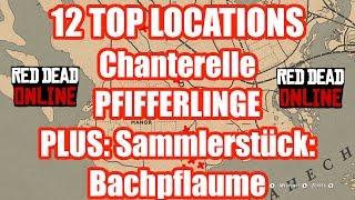12 TOP Locations Chanterelle Pfifferlinge Red Dead Redemption 2 Online