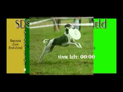 General Intro to Sighthound Disc Sport (SDS)