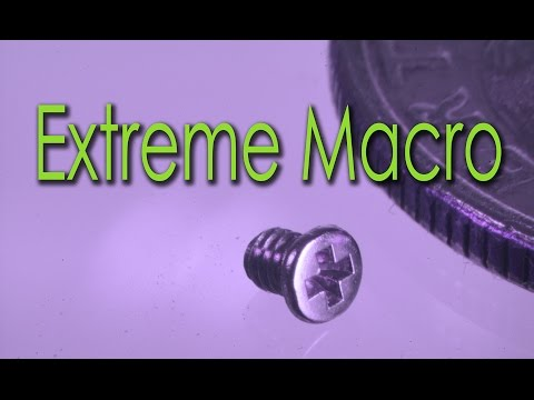 Extreme Macro Photography How To get it right in the Camera - Part 1