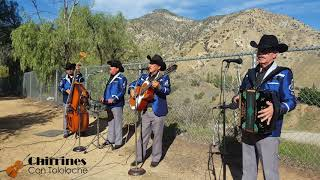 El Puño de tierra - Chirrines Con Tololoche Los Angeles CA 818-290-4645