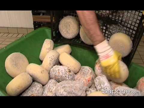 Saporie.com - Prodotti: Pecorino di Pienza