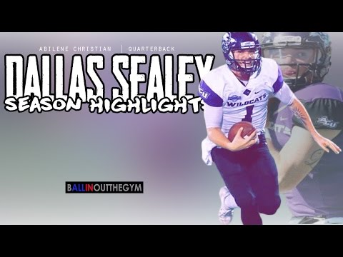 Dallas Sealey : (Abilene Christian University) (2016 Sophomore Season Highlights)