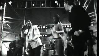 Watch Eric Burdon Shake video