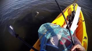 Kayak fishing West Bay Galveston Texas