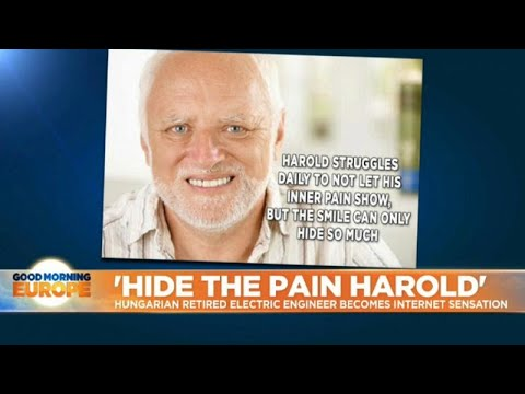 Watch Hide The Pain Harold Talk About His Meme Status In Tedx Talk