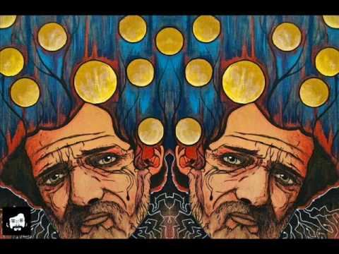 Tryptamine Hallucinogens & Consciousness (Terence McKenna) [FULL]