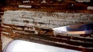 How to Repair major water damage in a Motorhome/Camper van