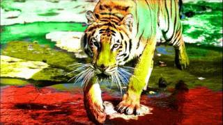 Cosmic Orient - Bengal Tiger (Original Mix)