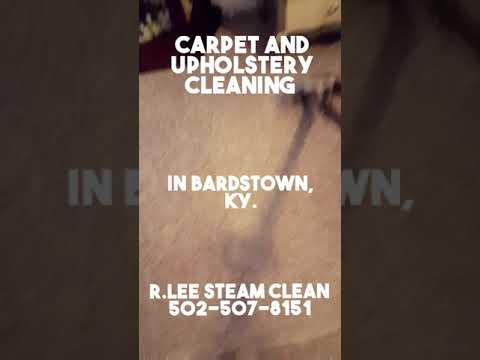 R LEE STEAM CLEAN CARPET AND UPHOLSTERY CLEANING 502-507-8151