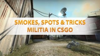 Smokes, spots & tips for militia map in cs:go