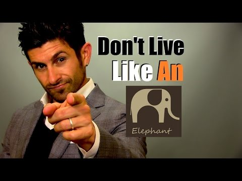 Don't Live Like An Elephant | Breaking Personal Limitations