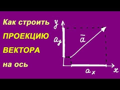 Как определить проекцию векторов в физике