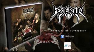 Festerguts - On the Bloodsoaked Bridal Bed