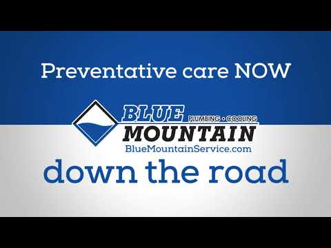 Blue Mountain - Tune Up Offer - Cooling Season