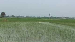 Samwad Yatra - Punjab Part 2 (Aug 2012)