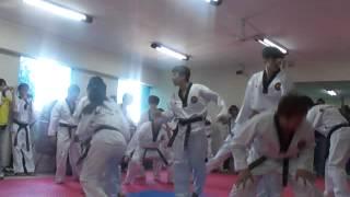 Taekwondo Korea Tigers - Peru Lima