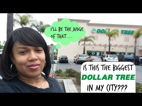 BIGGEST DOLLAR TREE?? LET'S GO SEE..