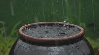 HEAVY RAIN 10 Hours -DeepSleep,relexing,insomnia,Study,reduce Stress