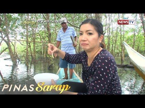 Pinas Sarap: Kara David, nanguha at tumikim ng tamilok sa Capiz