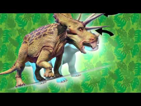 Dinosaur Discoveries Protoceratops and other Ceratopsians