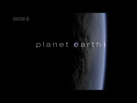 BBC Planet Earth Series Part - II