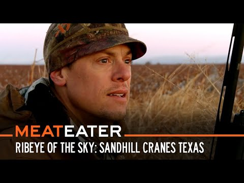 Download Ribeye of the Sky: Sandhill Cranes in West Texas | S5E10 | MeatEater