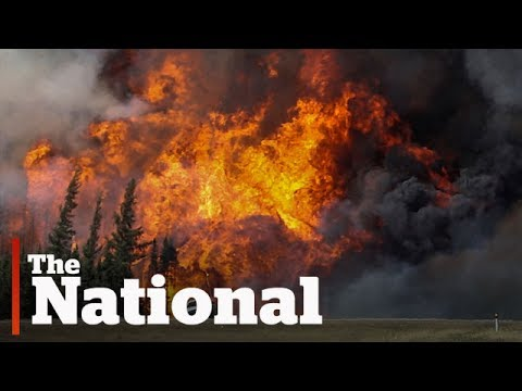 The science behind wildfires