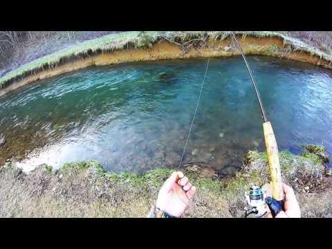 Cedar Springs Trout Fishing 2016